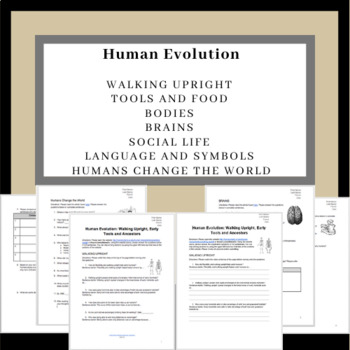 Human Evolution: Walking Upright, Early Tools and Ancestors Worksheet