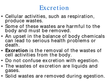 Human Excretion PowerPoint Presentation Lesson Plan