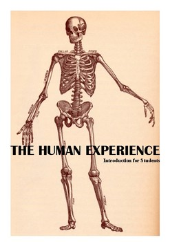 Human Experience Introduction