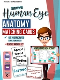 Human Eye Anatomy-Matching Cards-High School