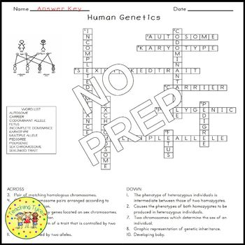 Human Genetics Crossword Puzzle