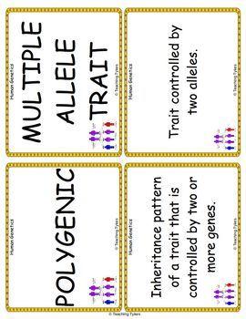 Human Genetics Vocabulary Cards