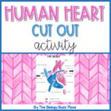 Human Heart Cut-Out Activity (PDF)