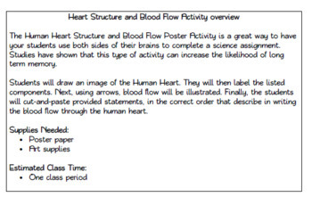 Human Heart Structure and Blood Flow Poster Activity