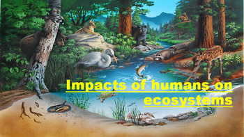 Human Impact on Ecosystems!