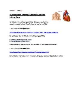 Human Internal/External Heart Interactives