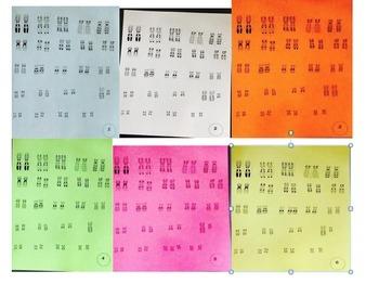Human Karyotype Analysis Activity
