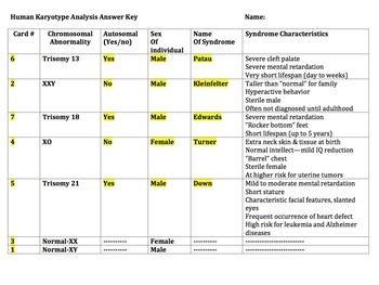 Human Karyotype Analysis Activity by Bio4U High School ...