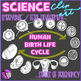 Human Birth Life Cycle Clip Art (Fetal development)