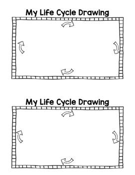Human Life Cycle Mini Book