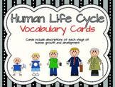 Human Life Cycle Vocabulary Cards