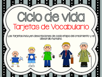 Human Life Cycle Vocabulary Cards *Spanish Version*