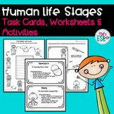 ESL Human Life Stages- Task Cards, Worksheets & Activities