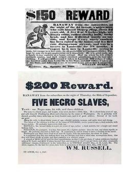 Human Migration (Underground Railroad) Social Studies Lesson