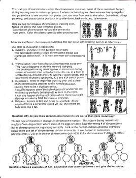 Human Mutation Quick Study