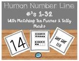 Human Number Line