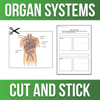 Human Organ Systems - Cut and Stick Worksheet