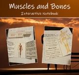 Human Organ Systems (Muscular & Skeletal) - Interactive Notebook