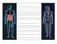 Human Organ Systems Poem Activity (10A)