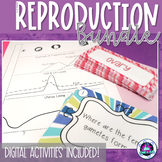 Human Reproduction BUNDLE