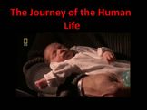 Human Reproduction : Journey of Life (TOTALLY ANIMATED)