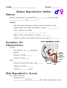 Human Reproduction and Development Notes Outline Lesson Plan