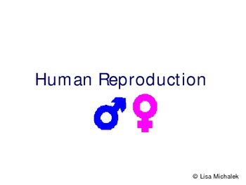 Human Reproduction and Development PowerPoint Presentation Lesson Plan
