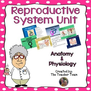 Reproductive System Unit for Anatomy and Physiology and Biology