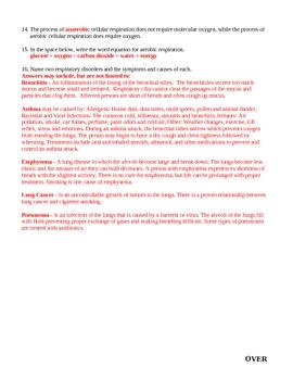 Human Respiration Homework 2