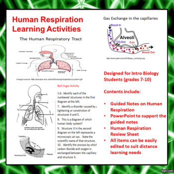 Human Respiration Learning Activities