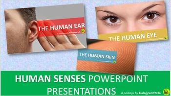 Human Senses PowerPoint Presentations