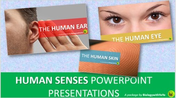 Human Senses PowerPoint Presentations