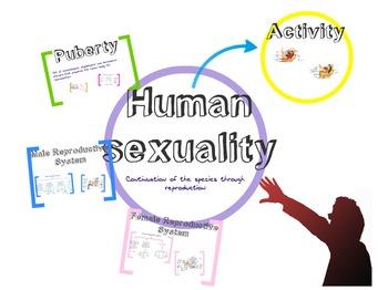 Human sexualaty