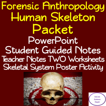 Human Skeleton Packet: PowerPoint, Student Guided Notes, Worksheets, Activity