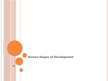 Human Stages of Development