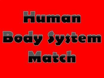 Human System Matching
