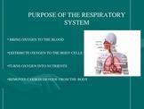 Human System Presentation: Respiratory System
