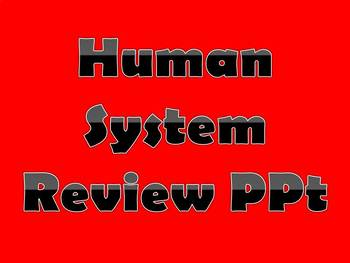 Human System Review PPt