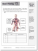 Human Systems - Skeletal, Digestive, Circulatory and Respiratory Systems