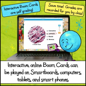 Human Tissue Classification - Interactive Online Boom Cards Activity