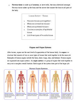Human Tissue & Organ System