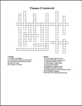 Human Tissues Crossword Puzzle By The Teacher Team Tpt