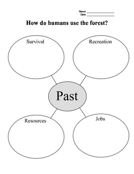 Human Use of Forests graphic organizer