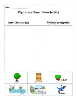 Human and Physical Characteristics Sort