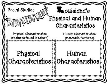 Human and Physical Characteristics of Louisiana Sorting Activity