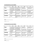 Human body assessment rubric