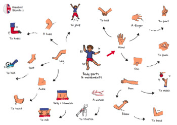 Human body parts and movements