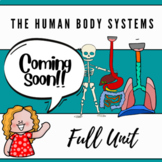Human body systems BUNDLE (posters, articles and worksheets)