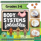 Human Body Systems foldables {Interactive Notebook}