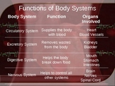 Human body systems and functions powerpoint (5th grade)